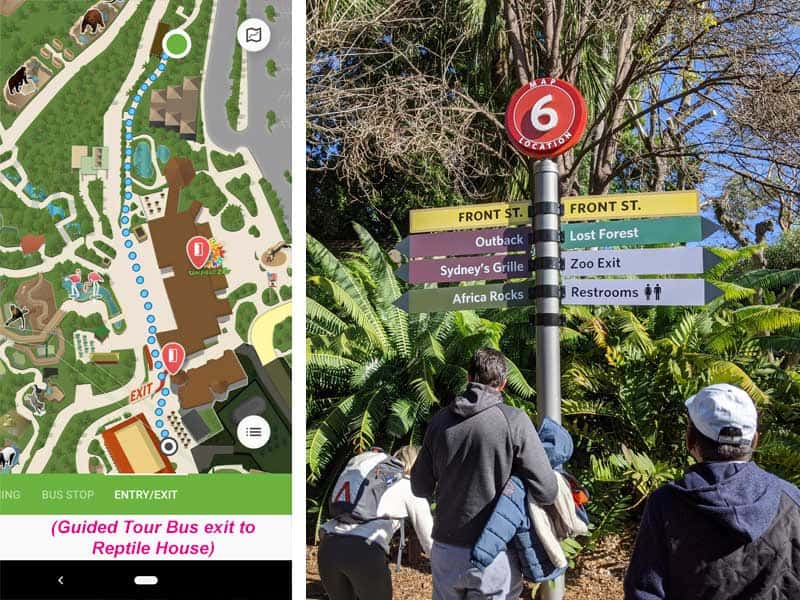 San Diego Zoo map. Route from Guided Tour Bus exit to Reptile House