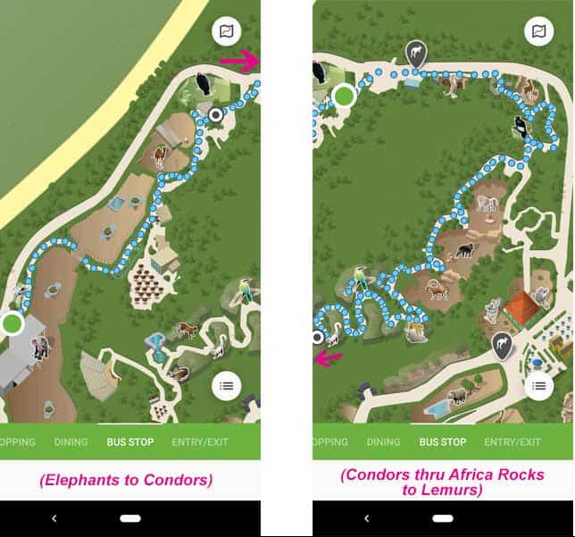 San Diego Zoo maps. Route from the Elephant Care Center to the condors and the lemurs at Africa Rocks.