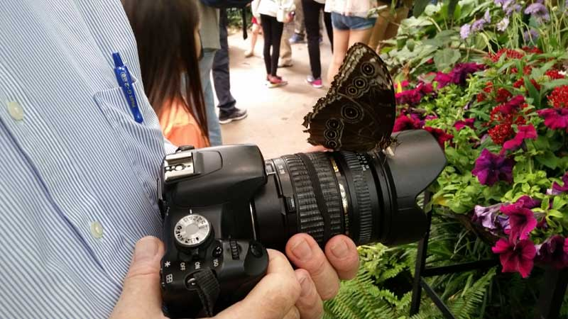 You can bring almost any camera into San Diego Zoo and Safari Park.