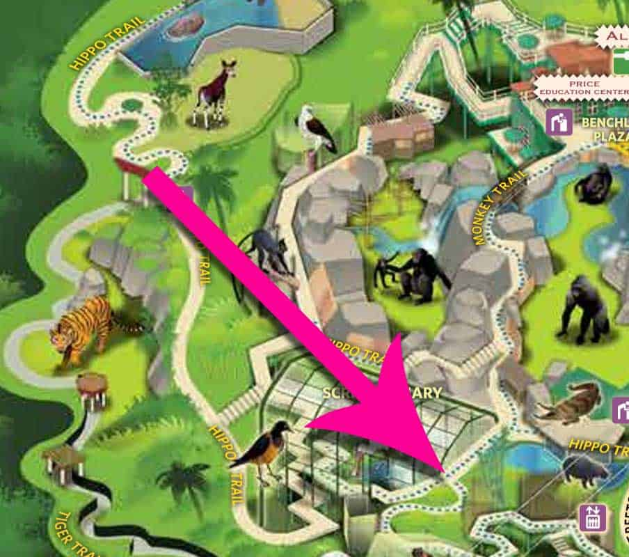 Small blue dots indicate wheelchair and stroller accessible walking routes on San Diego Zoo map.