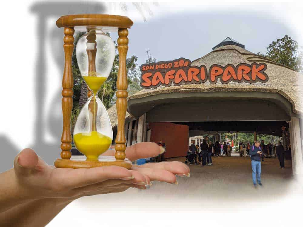 Is San Diego Safari Park worth your time?