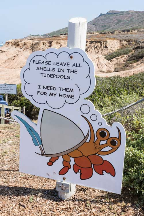 Sign at Cabrillo National Monument Tide Pools telling you to leave shells where they are.